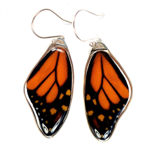 BW-0680-ER<BR>Rare Butterfly Image Earrings<BR>Monarch Butterlfy