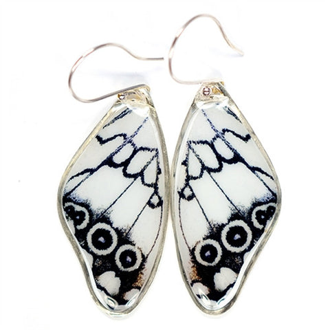 BW-0890-ER<BR>Rare Butterfly Image Earrings<BR>Levantine Marbled White Butterfly