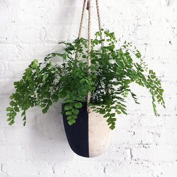 Hanging Planter: Black + White