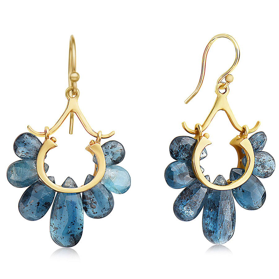 Small Peacock Earrings - 14k Gold + Orissa Kyanite