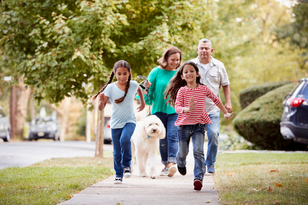 Family going for a walk on the sidewalk with a dog