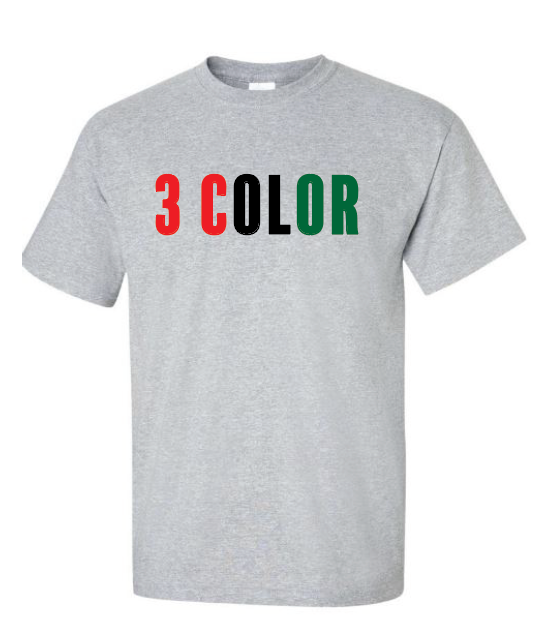 12 Custom T-Shirts (3 Color Design)