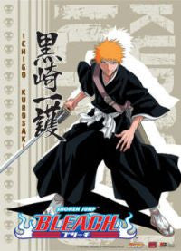 Ichigo Wall Scroll