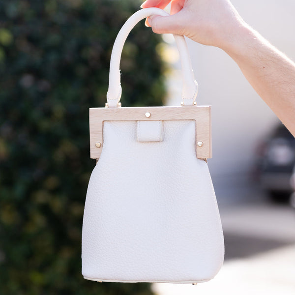 mini bag, satchel bag, purse, handbag, ivory bag. ivory mini bag with wood frame, Street Level