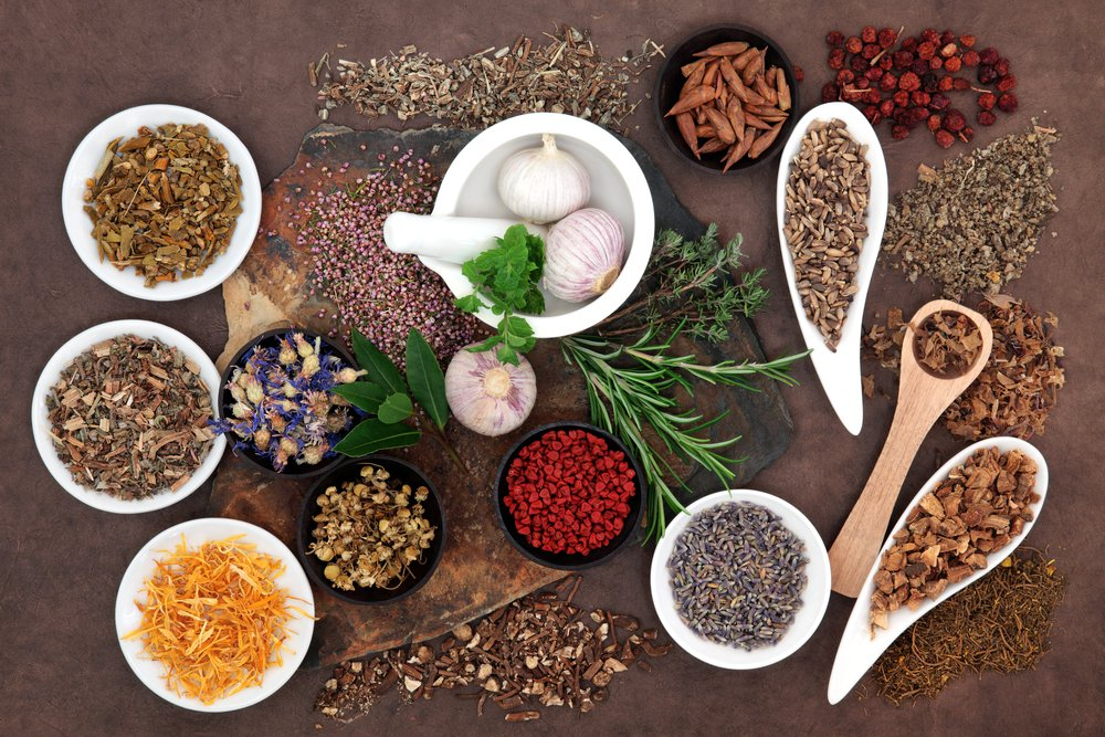 Best Herbs To Increase Fertility