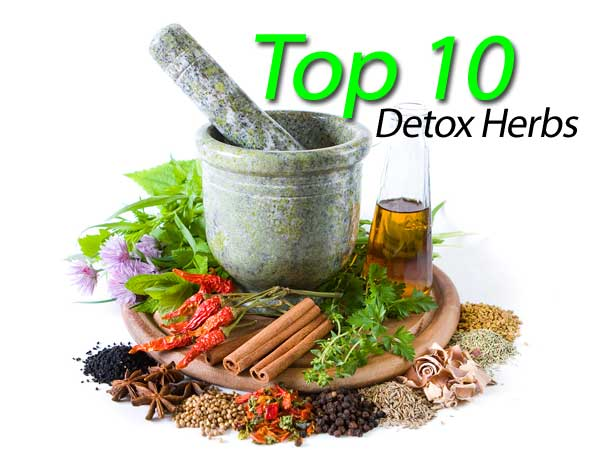 Best Herbs To Take For Detoxing