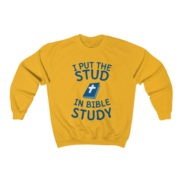 I Put The Stud In Bible Study Sweatshirt