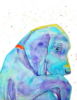 [weimaraner watercolour painting] - Malika Pet Art