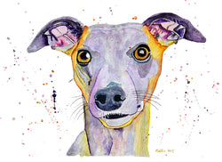[whippet dog original watercolour painting] - Malika Pet Art