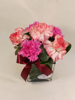 Sim Carnations in vase