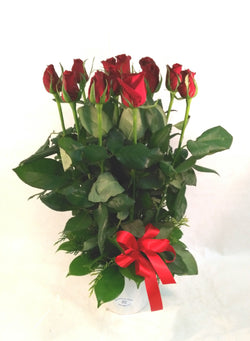 Dozen Red Roses Vase Arrangment