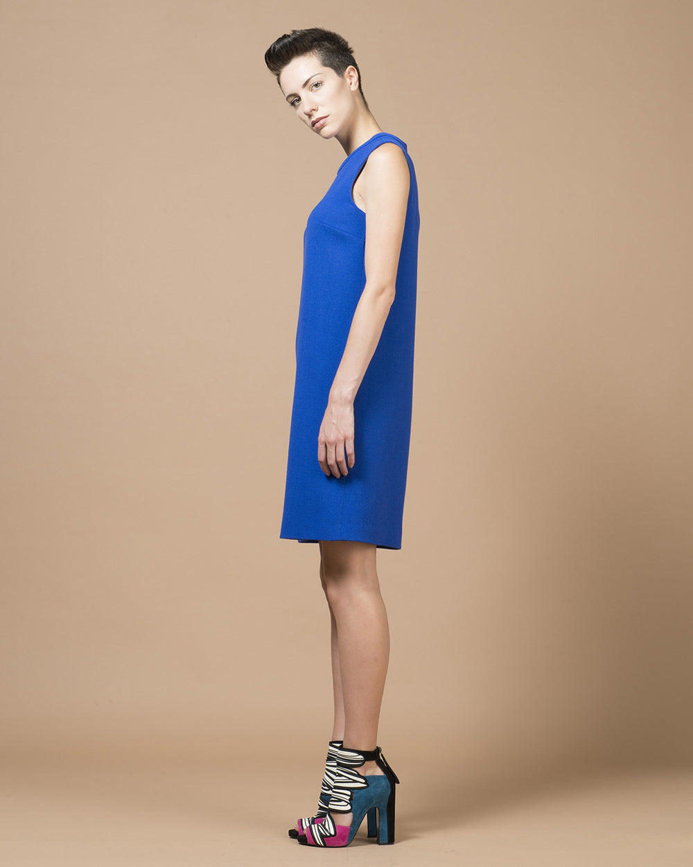 Electric Blue Round Neck Dress