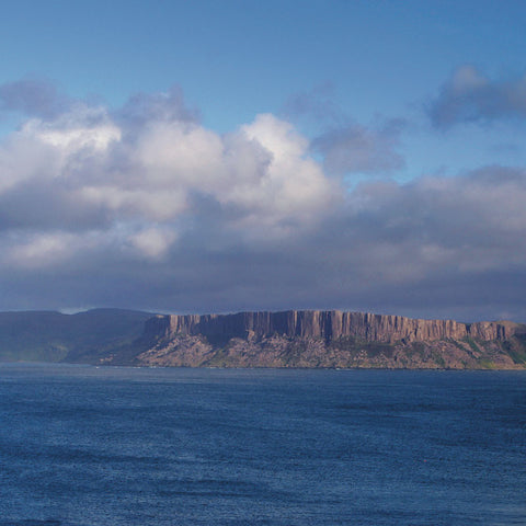 Boat Trips Departing from Ballycastle - Rathlin