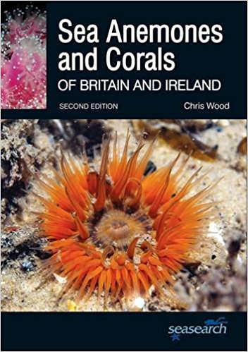 Sea Anemones & Corals Of Britain & Ireland