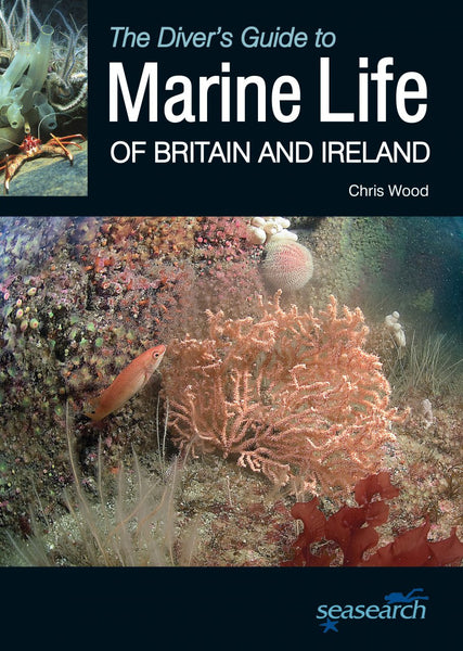 Marine Life of Britain and Ireland