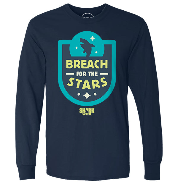 Breach for the Stars (1553520590947)