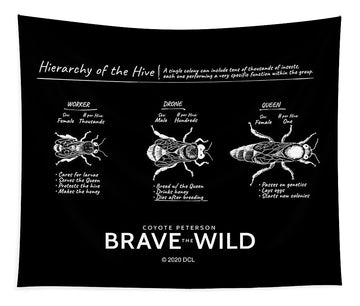 Hierarchy of the Hive - Tapestry