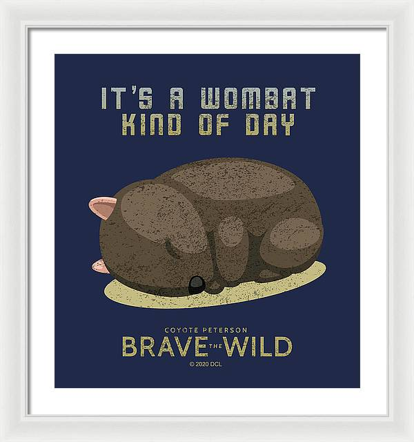 Lazy Wombat - Framed Print