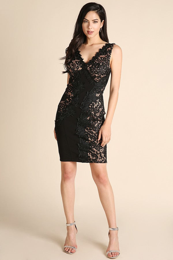 Sleeveless Black & Nude Lace Dress