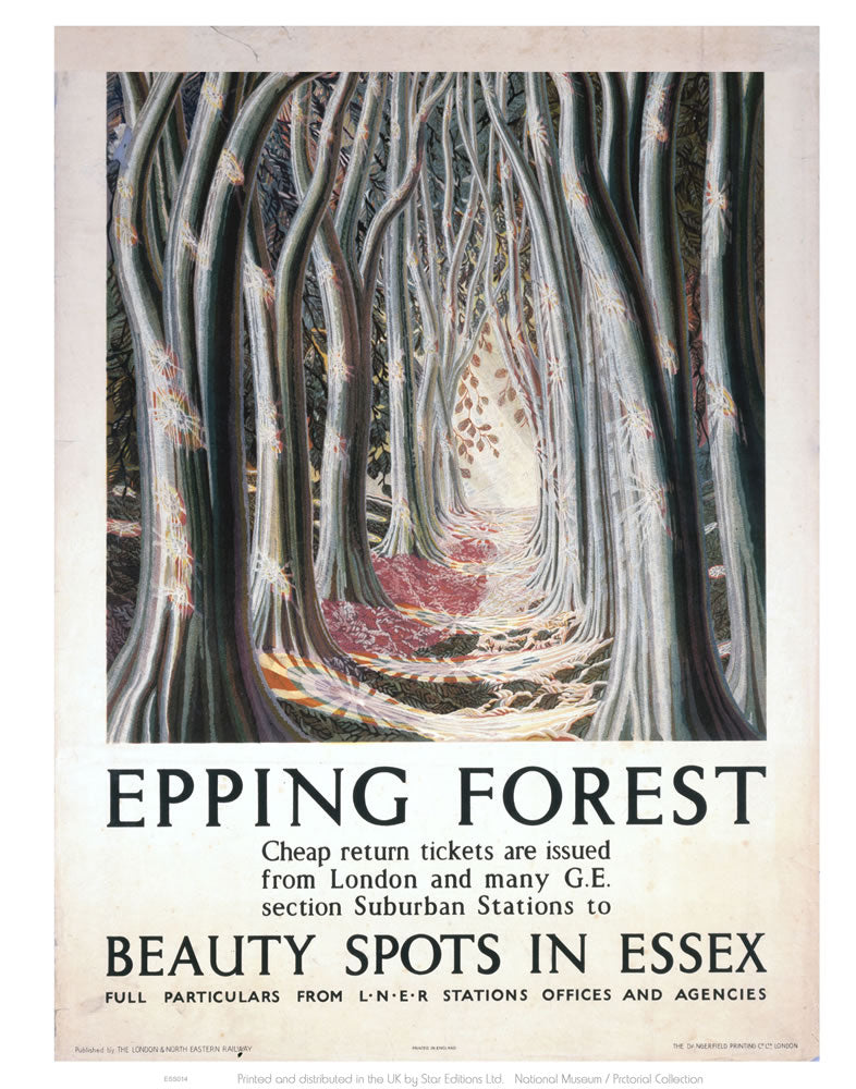 "Epping Forest Beauty Spots in Essex 24"" x 32"" Matte Mounted Print"