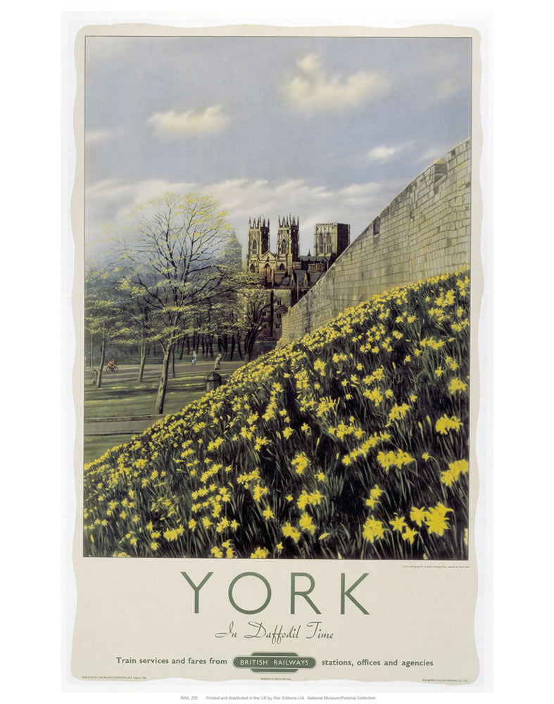 "York Yellow Flowers 24"" x 32"" Matte Mounted Print"