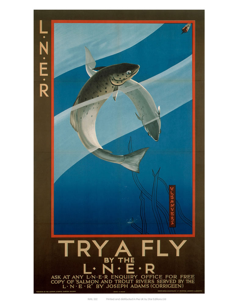 "Try a Fly 24"" x 32"" Matte Mounted Print"