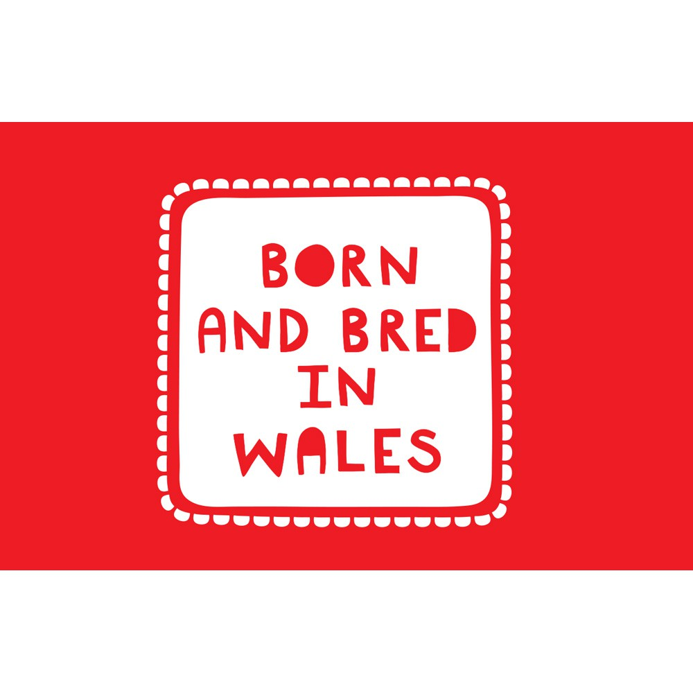Born And Bred In Wales 20cm x 20cm Mini Mounted Print