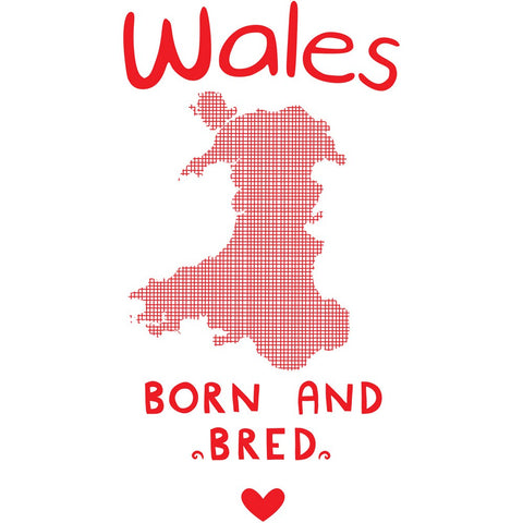 Wales Born and Bred 20cm x 20cm Mini Mounted Print