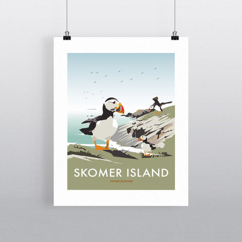 THOMPSON552: Skomer Island, Pembrokeshire. Greeting Card 6x6
