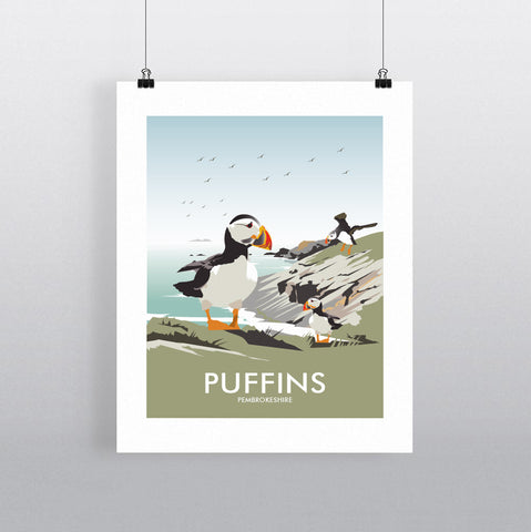 THOMPSON564: Puffins Pembrokeshire. Greeting Card 6x6
