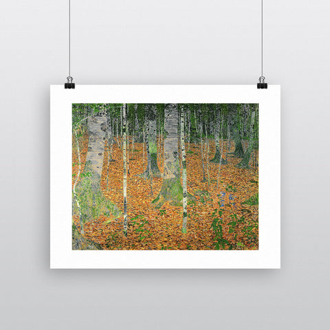 The Birch Wood, 1903 (oil on canvas) by Gustav Klimt 20cm x 20cm Mini Mounted Print