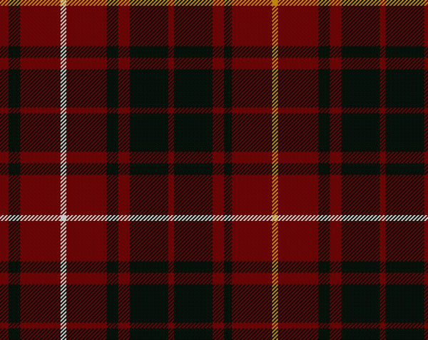 Bruce Modern Tartan 8oz Cloth | Scottish Shop