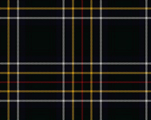Cockburn Modern Men's 4yd Kilt | Scottish Shop