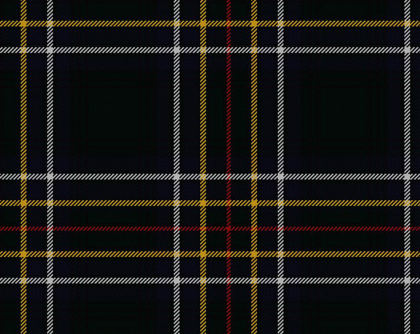 Cockburn Modern Ladies Semi-Kilt | Scottish Shop