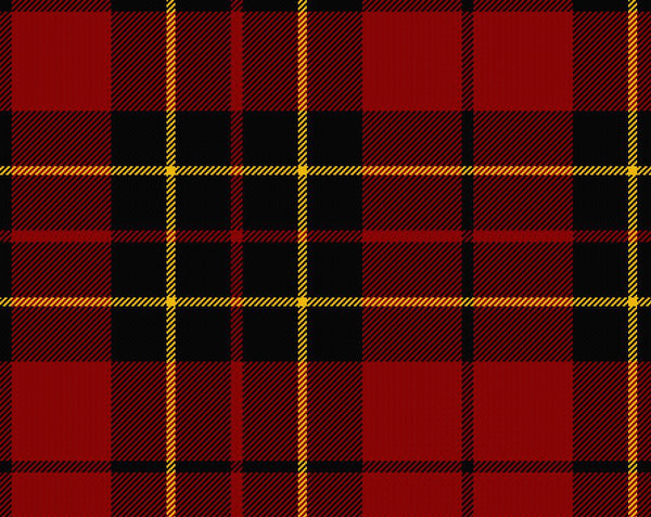 Brodie Red Modern Ladies Tartan Sash | Scottish Shop