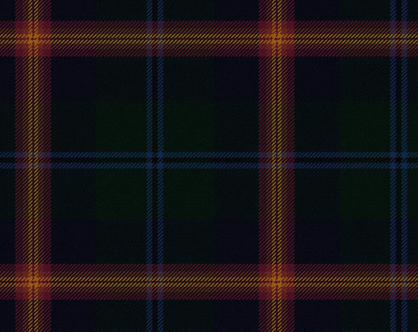 Young Modern Tartan 11oz Cloth | Scottish Shop