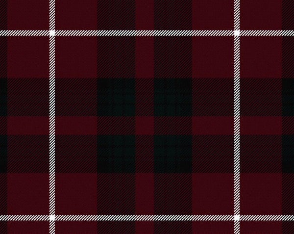Stuart of Bute Modern Tartan Suspenders | Scottish Shop