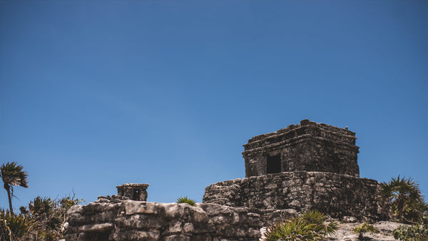 Yoga in the Mayan Riviera