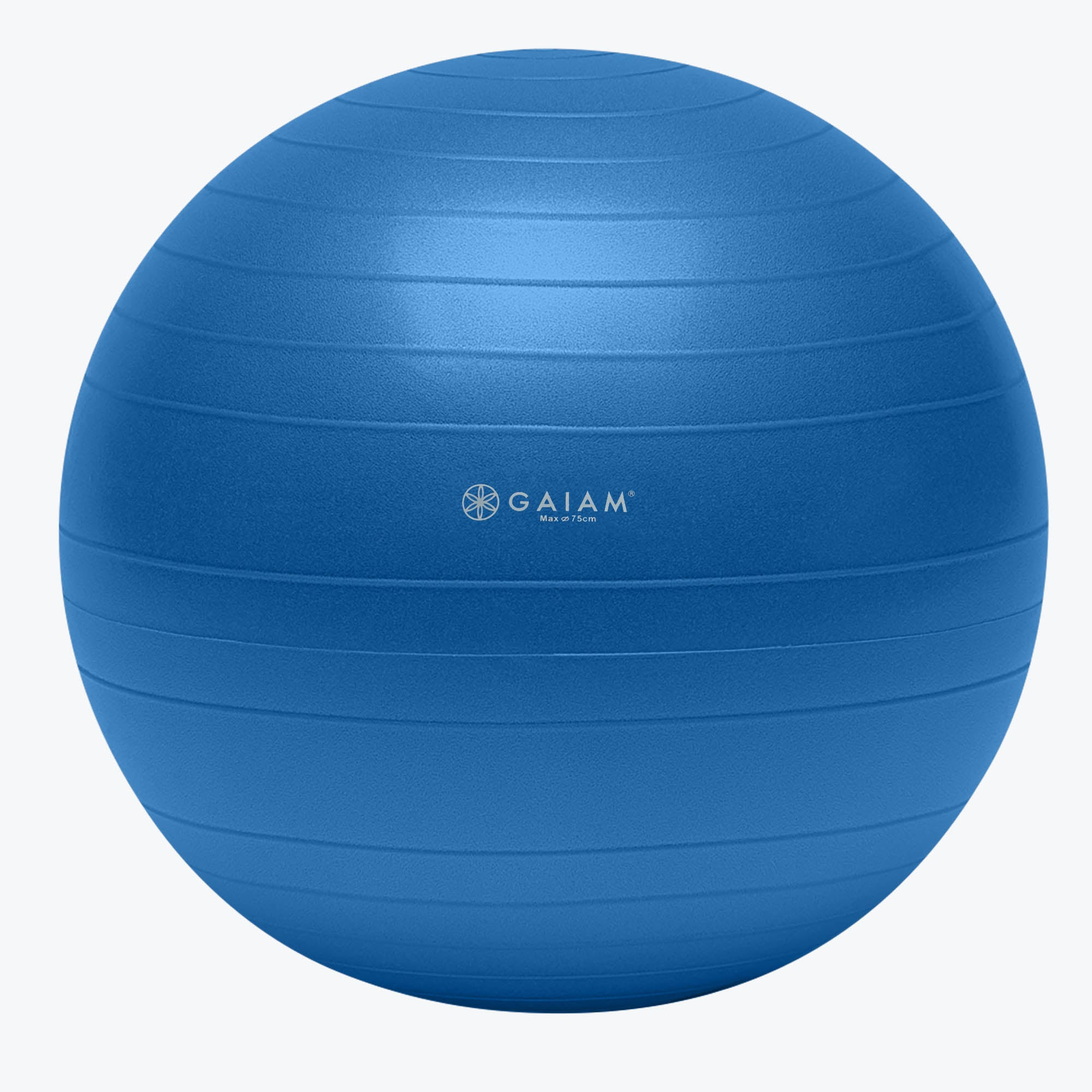 Gaiam Total Body Balance Ball® Kit