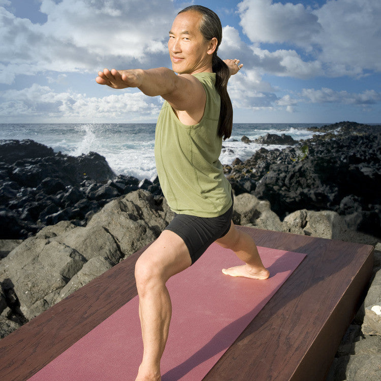 Gaiam Rodney Yee's Power Yoga DVD Collection