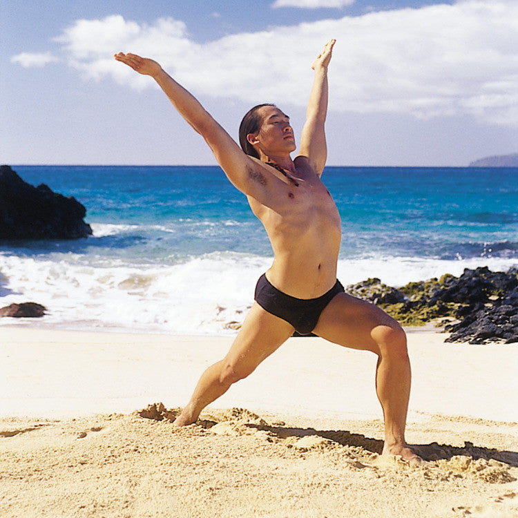 Pilates Chair Dvds Lifes Beach: Healing Yoga DVD With Rodney Yee