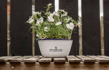 Where Flowers Bloom So Does Hope - Engraved Enamel Planter - One Mama One Shed