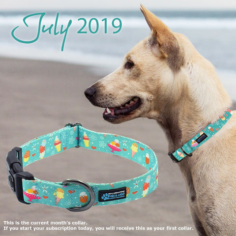 5567bd03 Summer is officially here and our July collar is a cool teal collar  featuring ice cream cones, bars, and sundaes. These collars are shipping  out today to ...