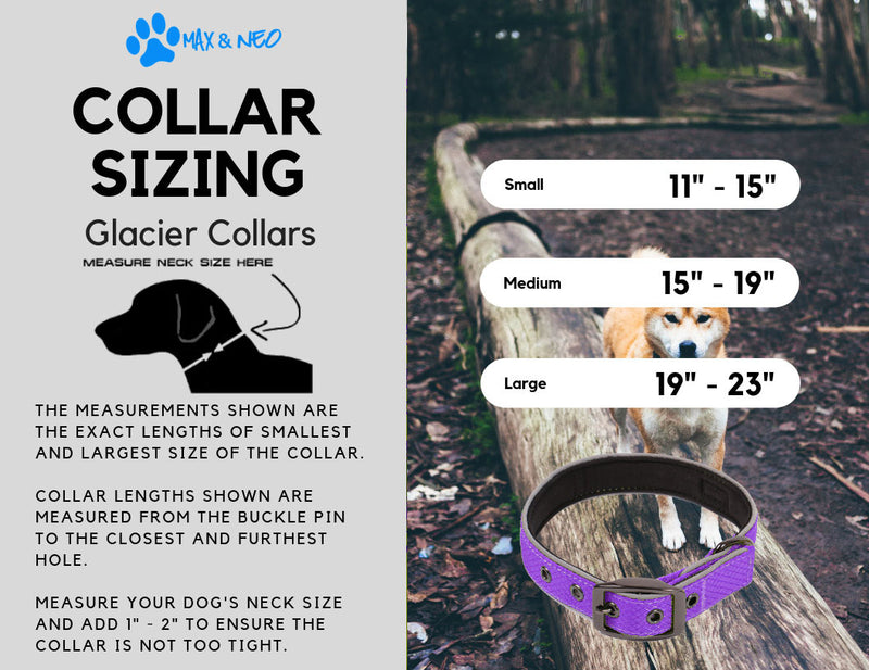 Glacier Dog Collar
