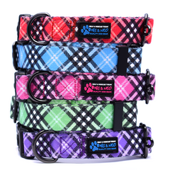 The NEO Dog Collar - Plaid