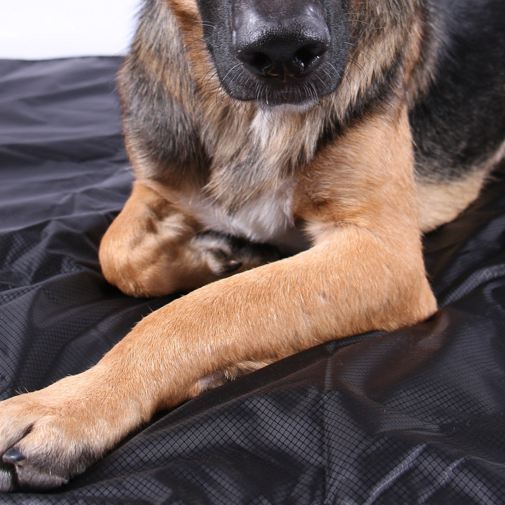 Fleece & Nylon Waterproof Dog Blanket