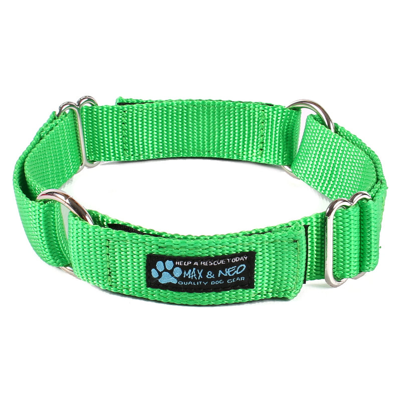 Day Care Velcro Play Collars (6 Pack)