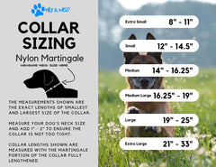 Martingale All Nylon XL Collar