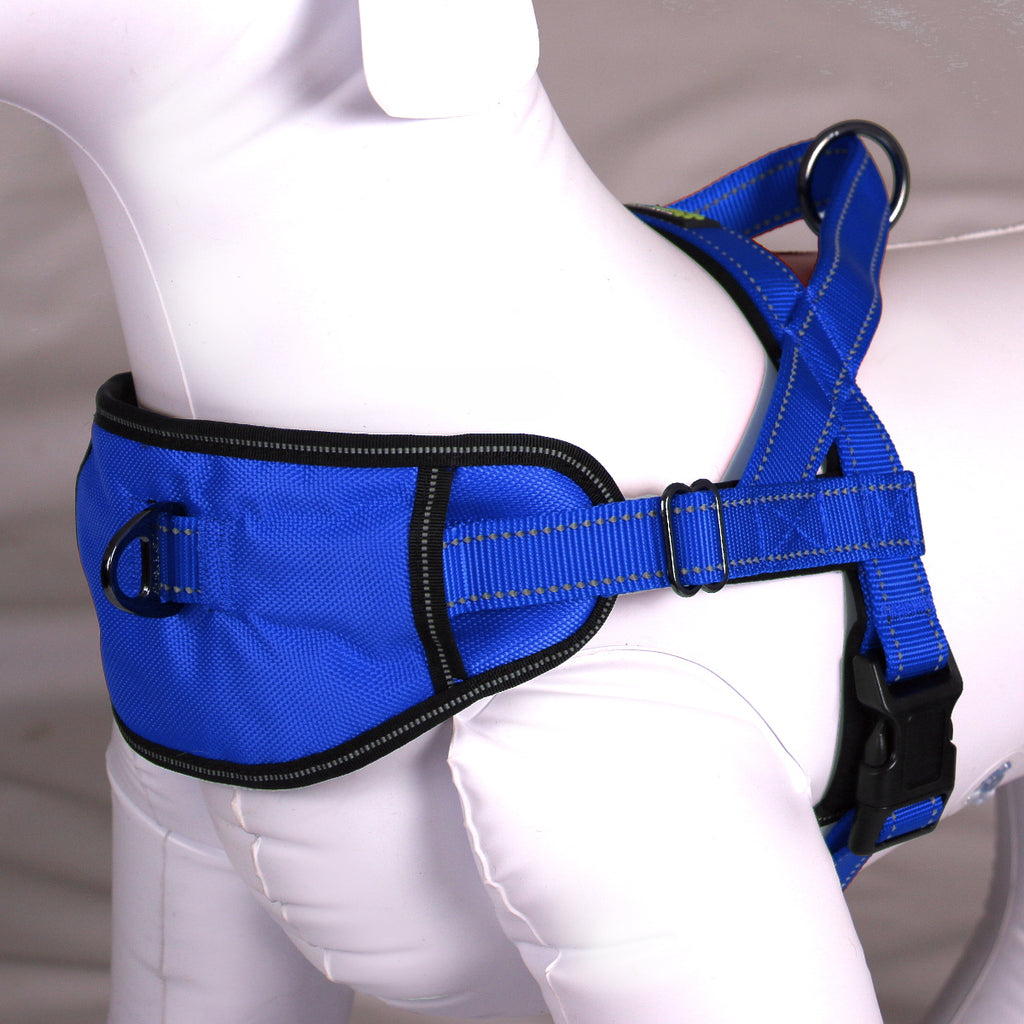 Passport Harness