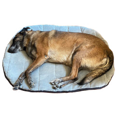 Portable Travel Dog Bed